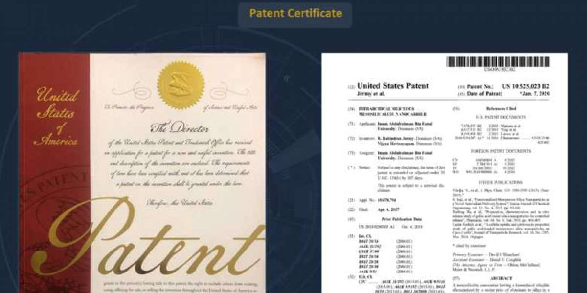 IAU Inventor, invented a nanocarrier with hierarchical dual pores -Patent with the US Patent and Trademark Office
